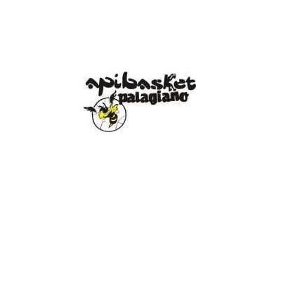 IL PRESIDENTE DELL'API BASKET RISPONDE AL SINDACO RESSA