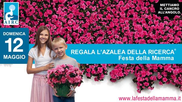 Domenica 12 maggio l'Azalea e' in piazza anche a Palagiano