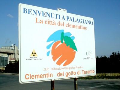 A Palagiano 26° Sagra del Mandarino, in programma per il 9 e 10 gennaio
