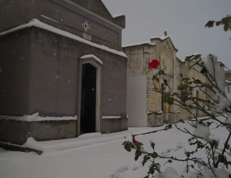 Tempio Crematorio: le ragioni di un No