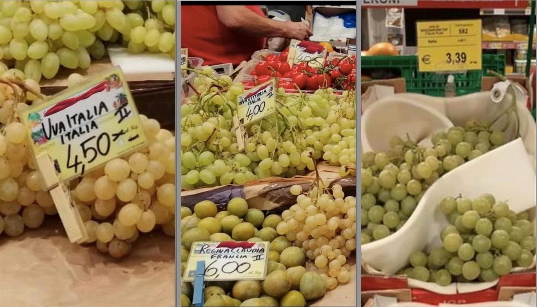 Uva da tavola, 60 cent ai produttori ma fino a 6 euro in supermercato