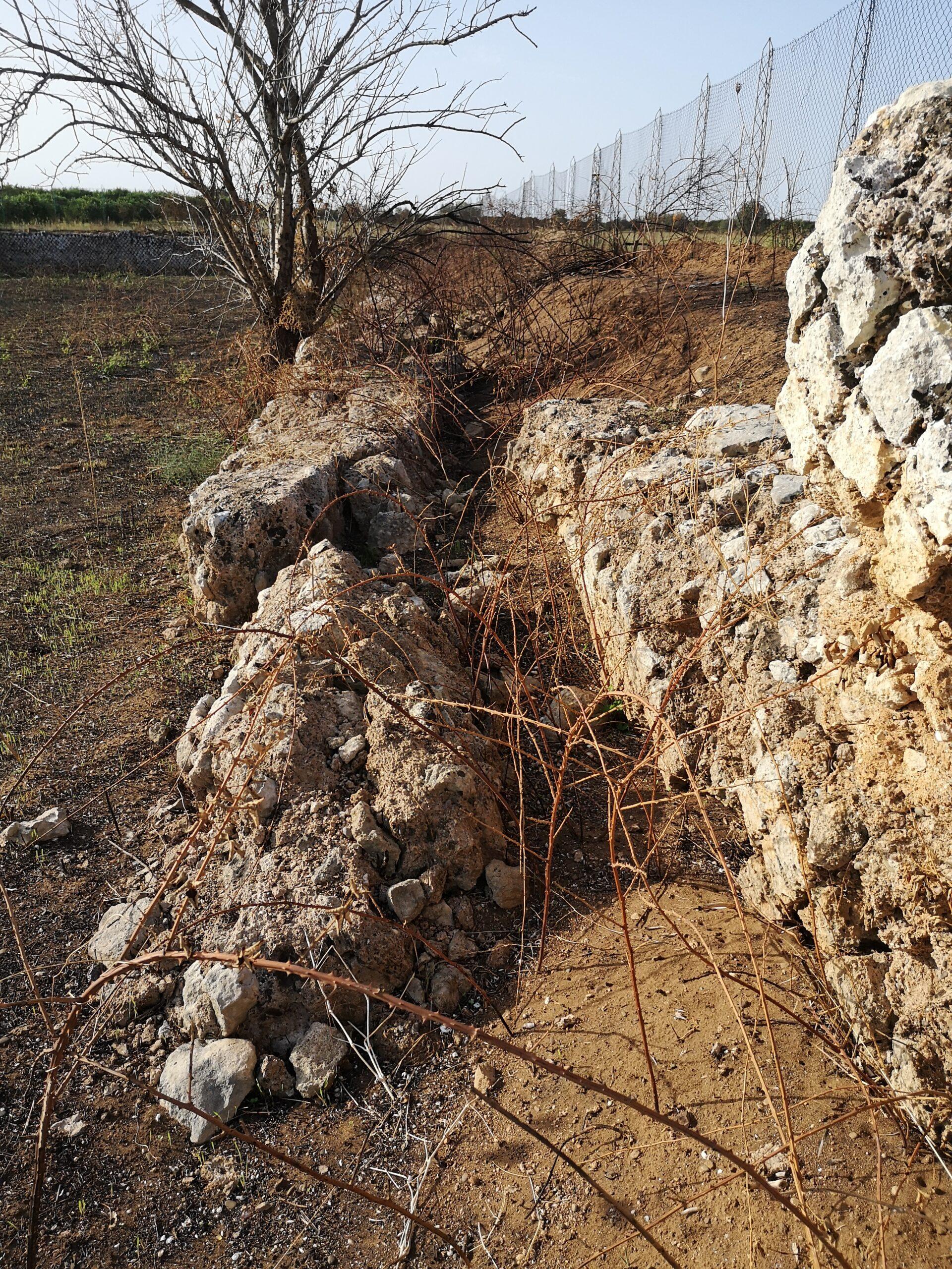 """Stato di degrado del sito archeologico """"Parete Pinto"""" in territorio di Palagiano"""