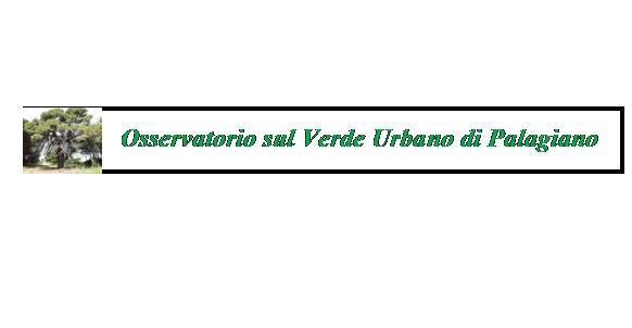 Sull'abbattimento di numerosi alberi a Palagiano e la tutela  del Verde Urbano.